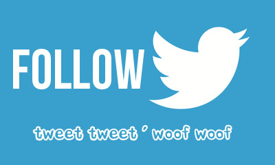 Follow Jackie's K9 Pet Care on Twitter